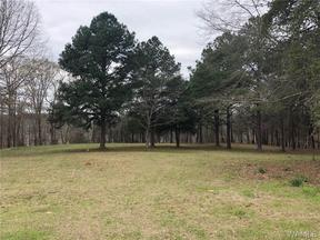 Property for sale at 1-9 BURNT PINES Road, Northport,  AL 35475