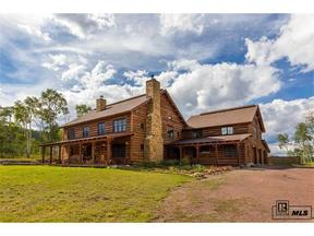 Property for sale at 16555 CR 16, Oak Creek,  Colorado 80467