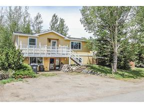 Property for sale at 553 Polar COURT, Silverthorne,  CO 80498