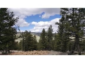 Property for sale at 1575 Redhill ROAD, Fairplay,  CO 80440