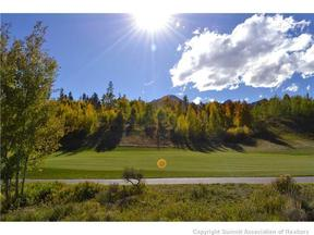 Property for sale at 26705 HWY 9 HIGHWAY, Silverthorne,  CO 80498