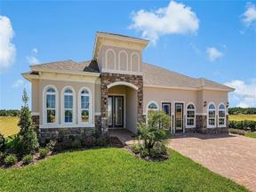 Property for sale at 1313 Blarney Street, Minneola,  Florida 34715