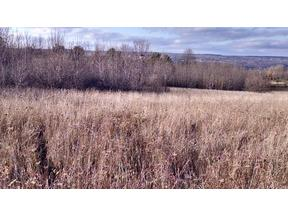 Property for sale at 0 Silsbee Rd., Hammondsport,  NY 14840