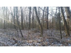 Property for sale at V/L 87 Stonebridge Dr, Amherst,  Ohio 44001