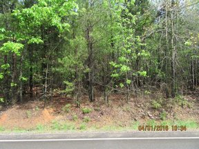 Property for sale at 0 Pebble Branch Road, Chapin,  South Carolina 29036