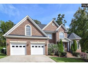 Property for sale at 133 Hawks Ridge Lane, Chapin,  SC 29036