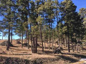 Property for sale at TBD CAVERN RD, Rapid City,  SD 57702