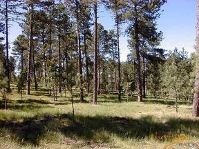 Property for sale at Lot 12 EAGLE RIDGE DR, Custer,  SD 57730