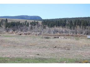 Property for sale at 3230 WHITEWOOD SERVICE RD, Sturgis,  SD 57785