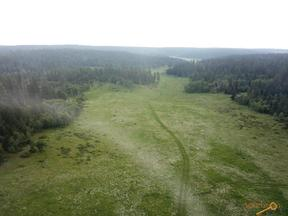 Property for sale at TBD BOLES CANYON RD, Hill City,  SD 57745