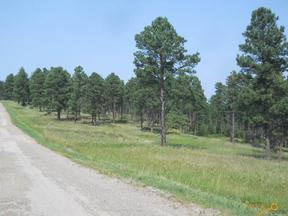 Property for sale at TBD SUN RIDGE RD, Rapid City,  SD 57702
