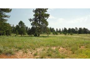 Property for sale at TBD 20 MILE RD, Custer,  SD 57730