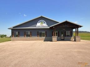 Property for sale at 955 PINE VIEW DR, Sturgis,  SD 57785
