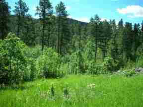 Property for sale at Buena Vista Highway 14A, Deadwood,  SD 57732