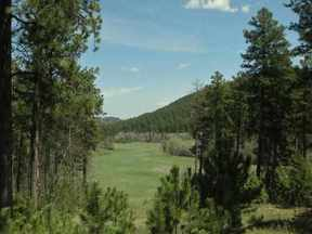 Property for sale at Government Lots Highway 85, Deadwood,  SD 57732