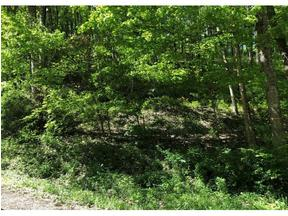 Property for sale at TBD June Apple Ln, Mountain City,  TN 37683