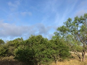 Property for sale at 1700  Live Oak Canyon   #Lot 9, Dripping Springs,  Texas 78620