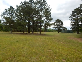Property for sale at TBD 41.86 US HWY 271 N., Gilm,  Texas 75645