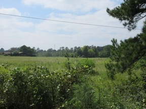 Property for sale at tbd Waldron Ferry Rd, Hallsville,  Texas 75650