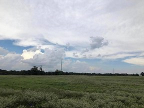 Property for sale at CR 403, Carthage,  TX 75633