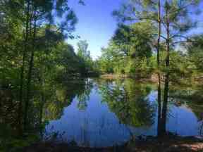 Property for sale at TBD U S Hwy 271 S, Gladewater,  TX 75647
